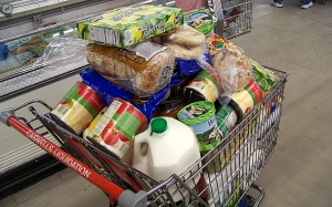 full-shopping-cart-2